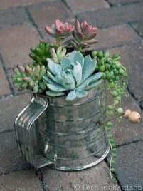 Amazing Succulents Garden Decor Ideas 31