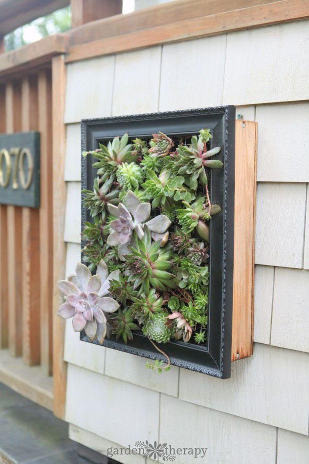 Amazing Succulents Garden Decor Ideas 35