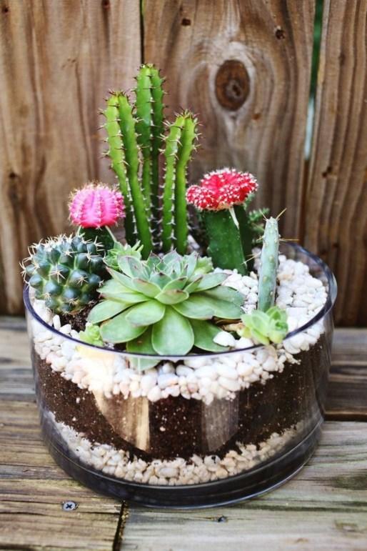 Amazing Succulents Garden Decor Ideas 40