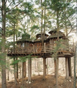 Awesome Treehouse Masters Design Ideas Will Make Dream 17
