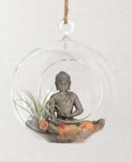 Creative Hanging Air Plants Decor Ideas 41