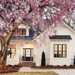 Amazing House Exterior Design Inspirations Ideas 201719