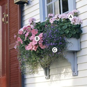 Amazing Windows Flower Boxes Design Ideas Must See16