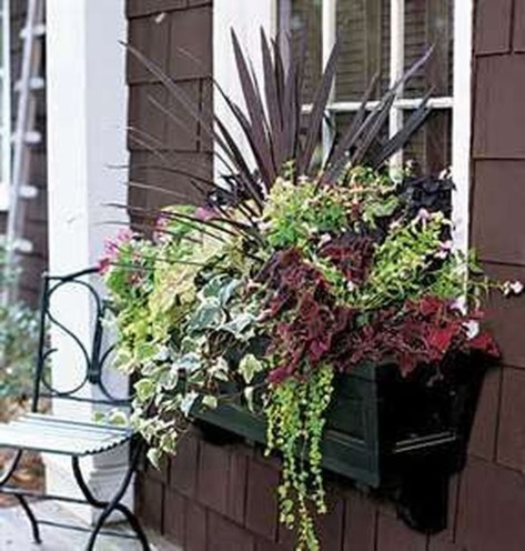 Amazing Windows Flower Boxes Design Ideas Must See19