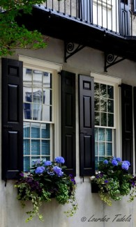 Amazing Windows Flower Boxes Design Ideas Must See24