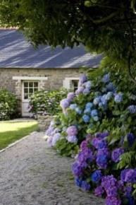 Elegant Colorful Bobo Hydrangea Garden Landscaping Ideas15