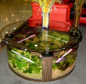Amazing Aquarium Feature Coffee Table Design Ideas04