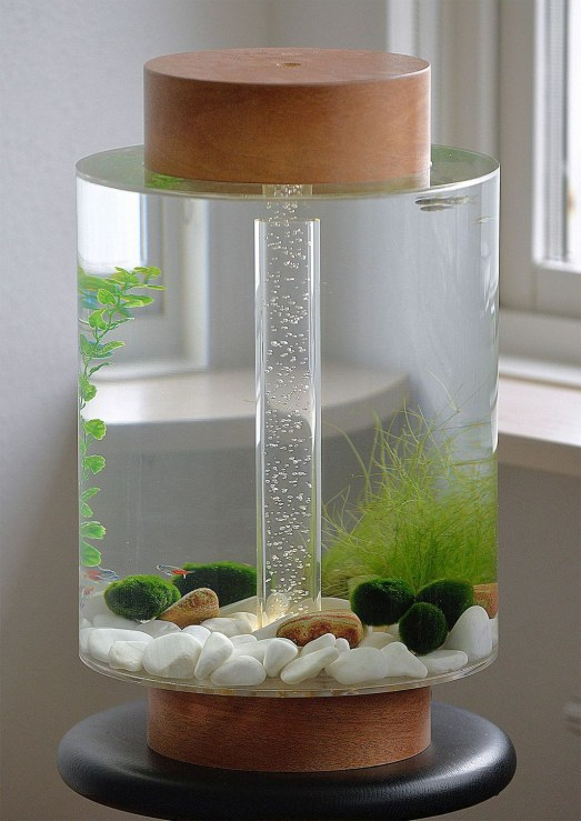 Amazing Aquarium Feature Coffee Table Design Ideas23