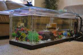 Amazing Aquarium Feature Coffee Table Design Ideas24