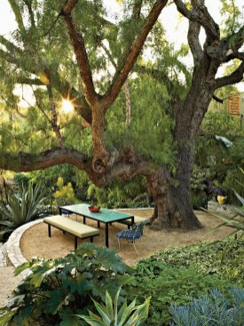Amazing Big Tree Landscaping Ideas07