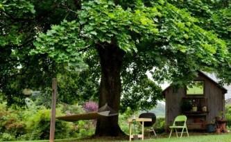 Amazing Big Tree Landscaping Ideas08