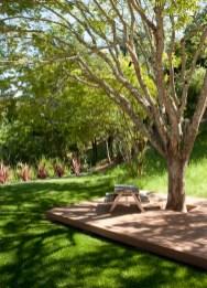 Amazing Big Tree Landscaping Ideas39