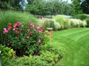 Amazing Grass Landscaping For Home Yard02