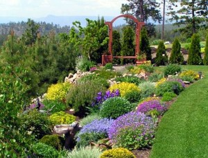 Amazing Grass Landscaping For Home Yard03