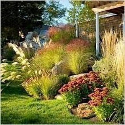 Amazing Grass Landscaping For Home Yard23