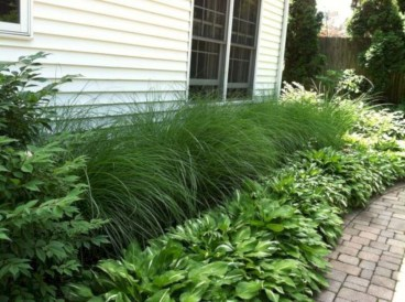 Amazing Grass Landscaping For Home Yard42