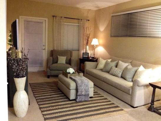 Amazing Small Apartment Living Room 33