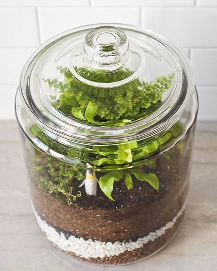 Awesome Ideas To Make Glass Jars Garden For Your Home Decor20