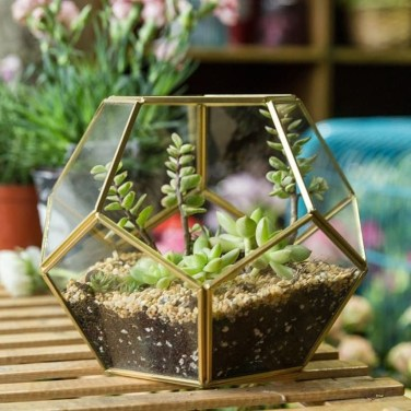 Awesome Ideas To Make Glass Jars Garden For Your Home Decor35