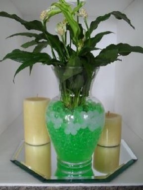 Inspiring Cool Water Beads For Indoor Decoration09