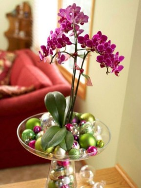 Inspiring Cool Water Beads For Indoor Decoration11