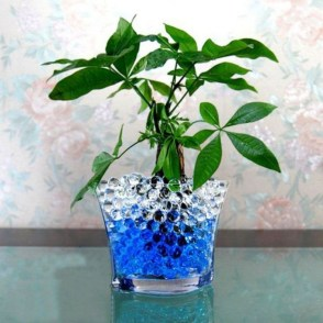 Inspiring Cool Water Beads For Indoor Decoration32