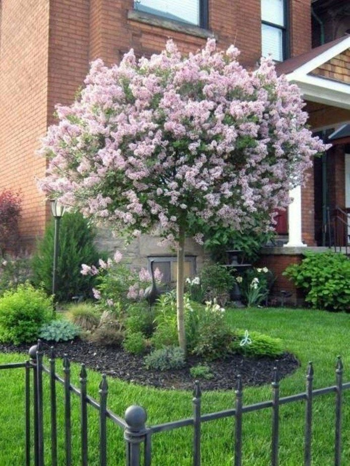 Wonderful Landscaping Front Yard Ideas12