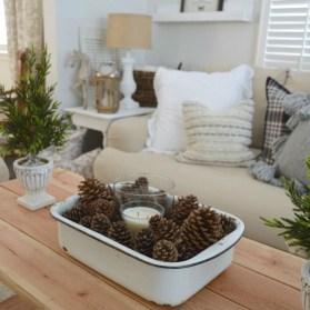 Amazing Farmhouse Winter Decoration Ideas37