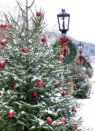 Amazing Outdoor Christmas Trees Ideas 02