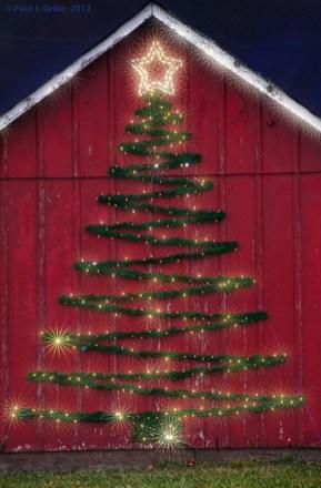 Amazing Outdoor Christmas Trees Ideas 27