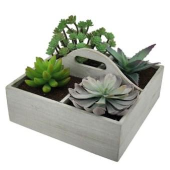 Cheap Succulent Plants Decor Ideas You Will Love02