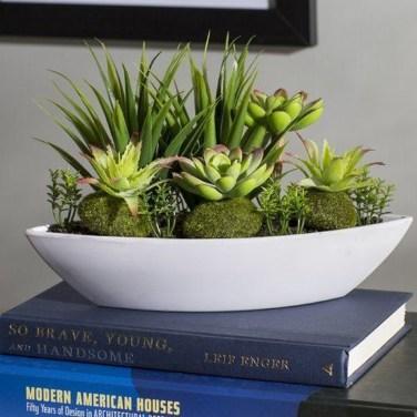 Cheap Succulent Plants Decor Ideas You Will Love41