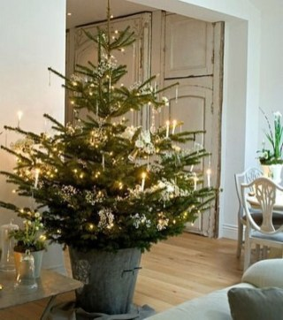 Minimalist Small Tree In A Bucket Ideas For Christmas35