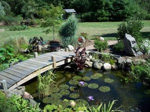 Popular Pond Garden Ideas For Beautiful Backyard12