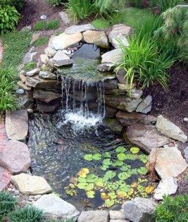 Popular Pond Garden Ideas For Beautiful Backyard28