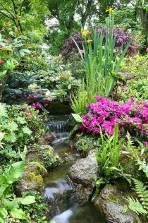 Popular Pond Garden Ideas For Beautiful Backyard30