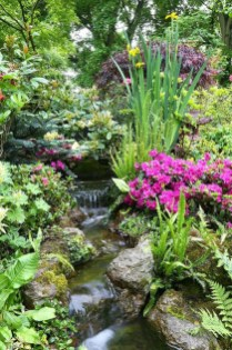 Popular Pond Garden Ideas For Beautiful Backyard30