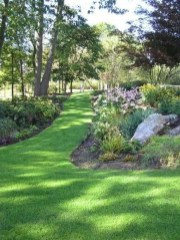 Amazing Big Tree Landscaping Ideas06