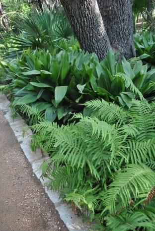 Amazing Big Tree Landscaping Ideas12
