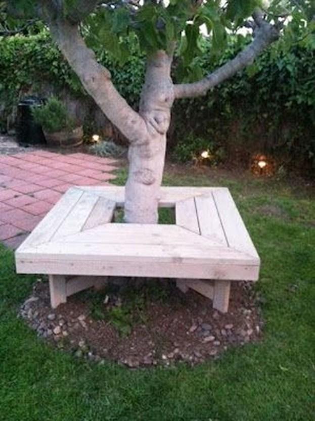 Amazing Big Tree Landscaping Ideas32