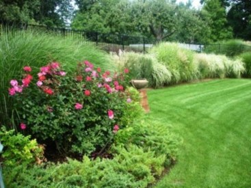 Amazing Grass Landscaping For Home Yard05