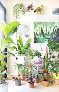 Inspiring Garden Indoor Decoration08