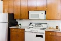 Amazing Mid Century Kitchen Ideas14