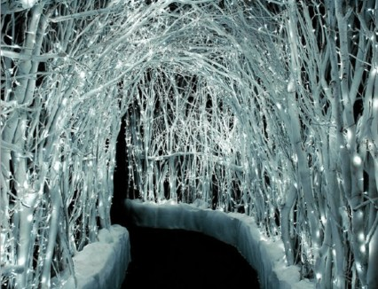Lovely Winter Wedding Decoration20