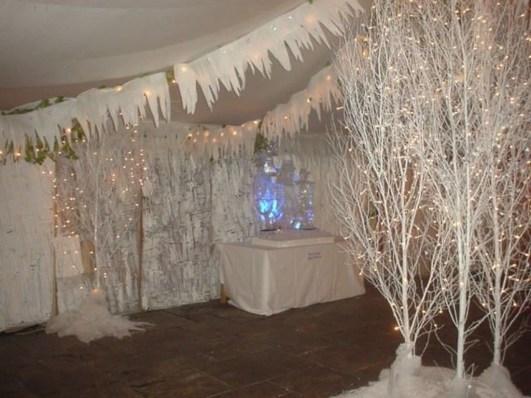 Awesome Winter Wonderland Wedding Decoration06