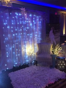 Awesome Winter Wonderland Wedding Decoration09