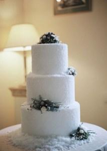 Awesome Winter Wonderland Wedding Decoration13