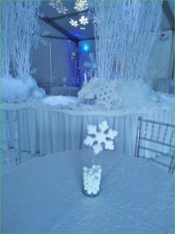 Awesome Winter Wonderland Wedding Decoration14