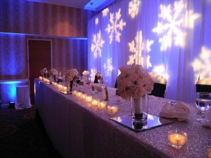 Awesome Winter Wonderland Wedding Decoration19