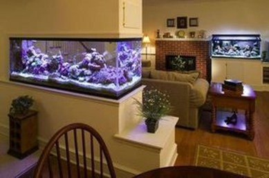 Awesome Aquarium Partition Ideas19